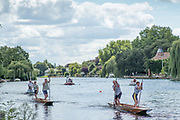 """Maidenhead, United Kingdom.  """"Mixed Doubles"""", approaching the """"Finsh Line"""". """"Thames Punting Club Regatta"""", Bray Reach.<br />  Sunday  06/08/2017<br /> <br /> [Mandatory Credit. Peter SPURRIER Intersport Images}.<br /> <br /> LEICA Q (Typ 116) 28mm  f1.7   1/5000 /sec    100 ISO River Thames, .......... Summer, Sport, Sunny, Bright, Blue Skies, Skilful,"""
