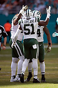 New York Jets outside linebacker Brandon Copeland (51) celebrates with New York Jets inside linebacker Avery Williamson (54) during the NFL week 9 regular season football game against the Miami Dolphins on Sunday, Nov. 4, 2018 in Miami Gardens, Fla. The Dolphins won the game 13-6. (©Paul Anthony Spinelli)