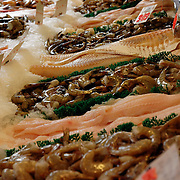 Fresh fish window display