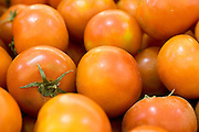 A pile of fresh, ripe red tomatoes