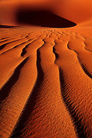 Ripples in sand, Namibia-Naukluft National Park, Namibia.