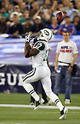 New York Jets wide receiver Braylon Edwards (17) bobbles and drops the football on a play that should have been a touchdown pass during the NFL football game against the Buffalo Bills, December 3, 2009 in Toronto, Canada. The Jets won the game 19-13. ©Paul Anthony Spinelli