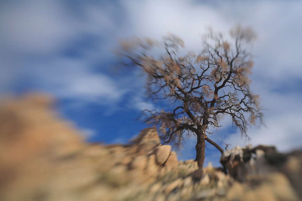 Desert Oak Large Rock Hill - Full Clouds - Lensbaby