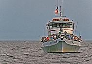 Fluke Fishing in Raritan Bay, Staten Island in background
