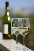 Two glasses of white wine with a wine bottle