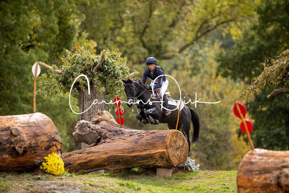 Price Tim, NZL, Happy Boy<br /> Mondial du Lion - Le Lion d'Angers 2019<br /> © Hippo Foto - Dirk Caremans<br />  19/10/2019