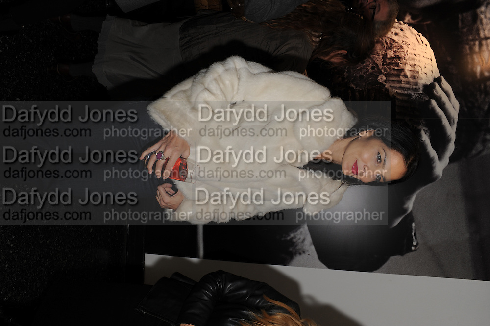 YASMINE MILLS, Vanity Fair  hosted  UK Premiere and party for Beyond Time. A film about the artist William Turnbull made by his son Alex Turnbull. Narrated by Jude Law. I.C.A. London. 17 November 2011<br /> <br />  , -DO NOT ARCHIVE-© Copyright Photograph by Dafydd Jones. 248 Clapham Rd. London SW9 0PZ. Tel 0207 820 0771. www.dafjones.com.