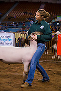 Oklahoma Youth Expo is recognized as the largest youth event in the state of Oklahoma. The livestock show brings over 7,000 exhibitors along with their educators and families from all of Oklahoma's 77 counties. Over the course of the ten-day event,
