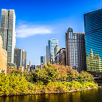 Picture of Chicago buildings at Wolf Point.  Wolf Point is where the Chicago River South Branch, North Branch and Main Stem meet. Picture was taken in late 2011 and is high resolution.