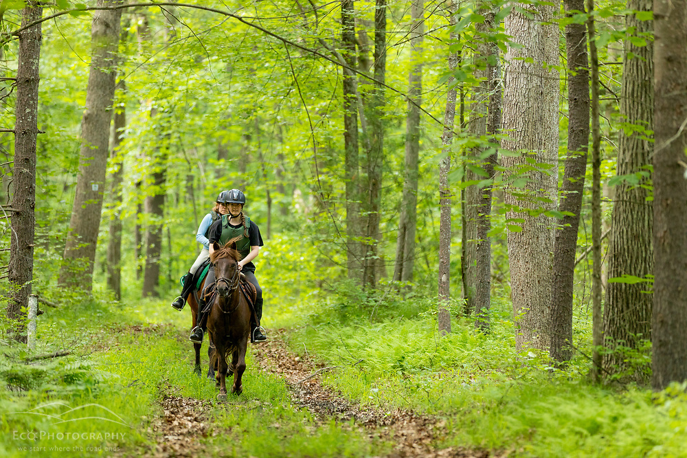 Two women ride horses in a forest at the Donibristle Reservation in Topsfield, Massachusetts.