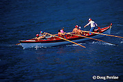 team rows traditional open whale boat, or canoa, during race, Pico Island, Azores, Portugal ( North Atlantic Ocean )