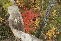 Gorge trip with Coyle, Tuesday, Oct. 29, 2013 at Wolfe County in Red River Gorge.