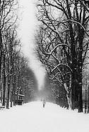 France. paris. 8th district. Champs Elysees under the snow / paris sous la neige en hiver