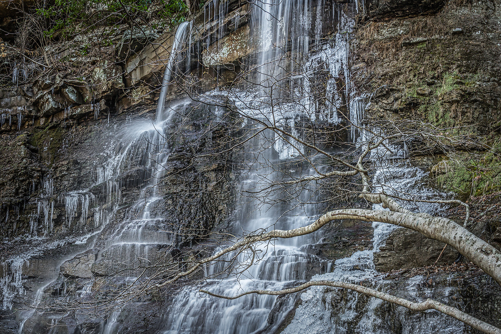 White Oak Creek Falls of Mercer County West Virginia, forms a frozen palisade of ice along the outer edge as a small beech tree appears to greet the inner sanctum of water with outstretched limbs.