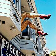 Piedmont legs, Haight Street