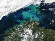 Barents Sea   July 19th, 2003, as seen by MODIS. Image courtesy of Jacques Descloitres, MODIS Land Rapid Response Team at NASA GSFC.