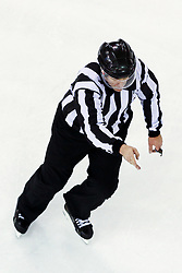 Linesman Damir Rakovic during ice hockey match between HDD Telemach Olimpija and HDD SIJ Acroni Jesenice in Final of Slovenian League 2015/2016, on April 11, 2016 in Hala Tivoli, Ljubljana, Slovenia. Photo By Matic Klansek Velej / Sportida