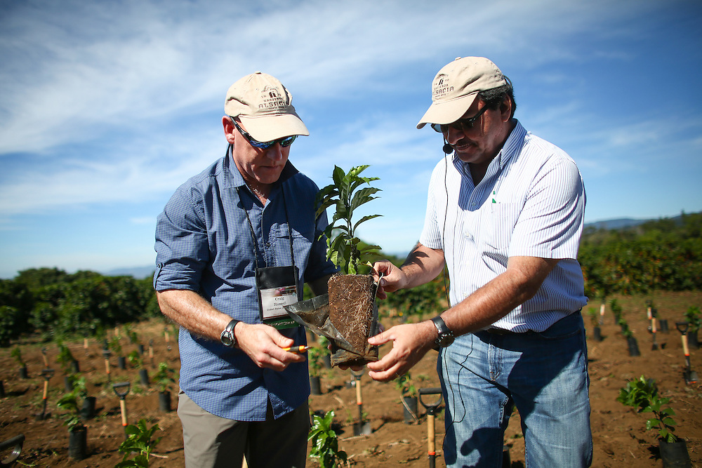 Craig Russell, Starbucks executive vice president, Global Coffee, and Hacienda Alsacia farm manager Victor Trejos prepare to plant a new coffee tree on the Hacienda Alsacia farm during the 2016 Starbucks Origin Experience for Partners. Photographed in January 2016. (Joshua Trujillo, Starbucks)<br /> <br /> ***model released***