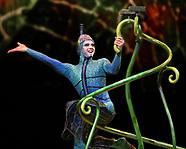 Cirque Du Soleill Ovo AAA 2017
