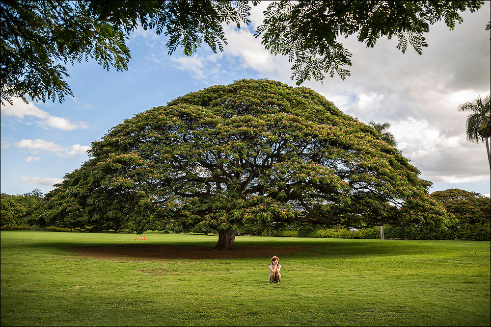 Visitor to Hawaii poses in front of Hitachi monkeypod tree at Moanalua Gardens in Honolulu. ©PF Bentley