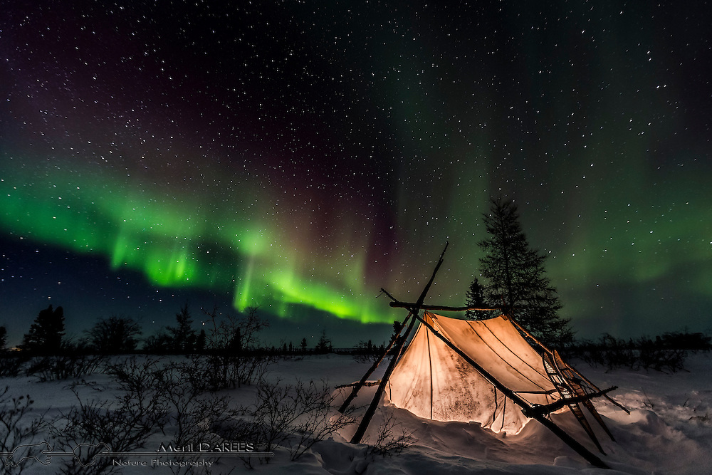Traditional trapper tent on front of northern lights. Hudson bay, Churchill Area, Manitoba, Canada.