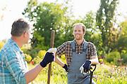 Happy gardeners talking at plant nursery