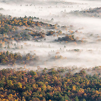 Fog envelopes autumn foliage in the valley below the Blue Ridge Parkway, Pisgah National Forest, NC.