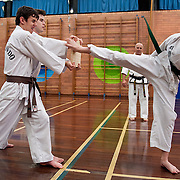 Rhee Tae Kwon Do - May 9, 2013