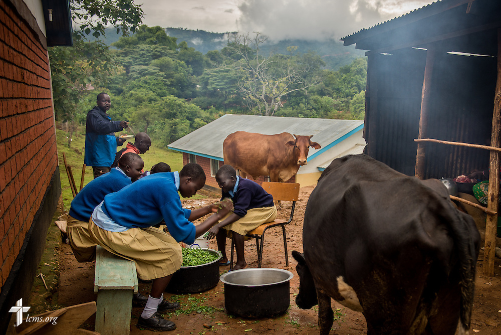 Young women and staff members prepare dinner at the U-Dom ELCK (Evangelical Lutheran Church in Kenya) Project 24 site on Wednesday, June 22, 2016, in Chepareria, Kenya.  LCMS Communications/Erik M. Lunsford