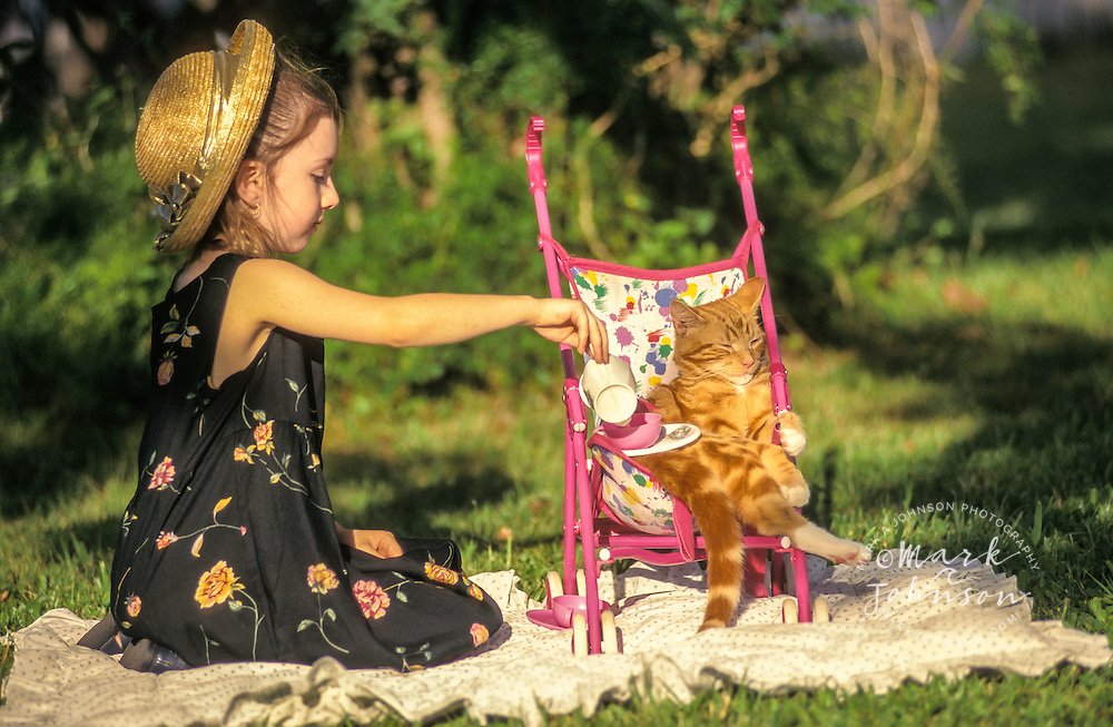 Australia, Qld., 6 y.o. girl having tea party with pet cat (cat in baby stroller).  MR available