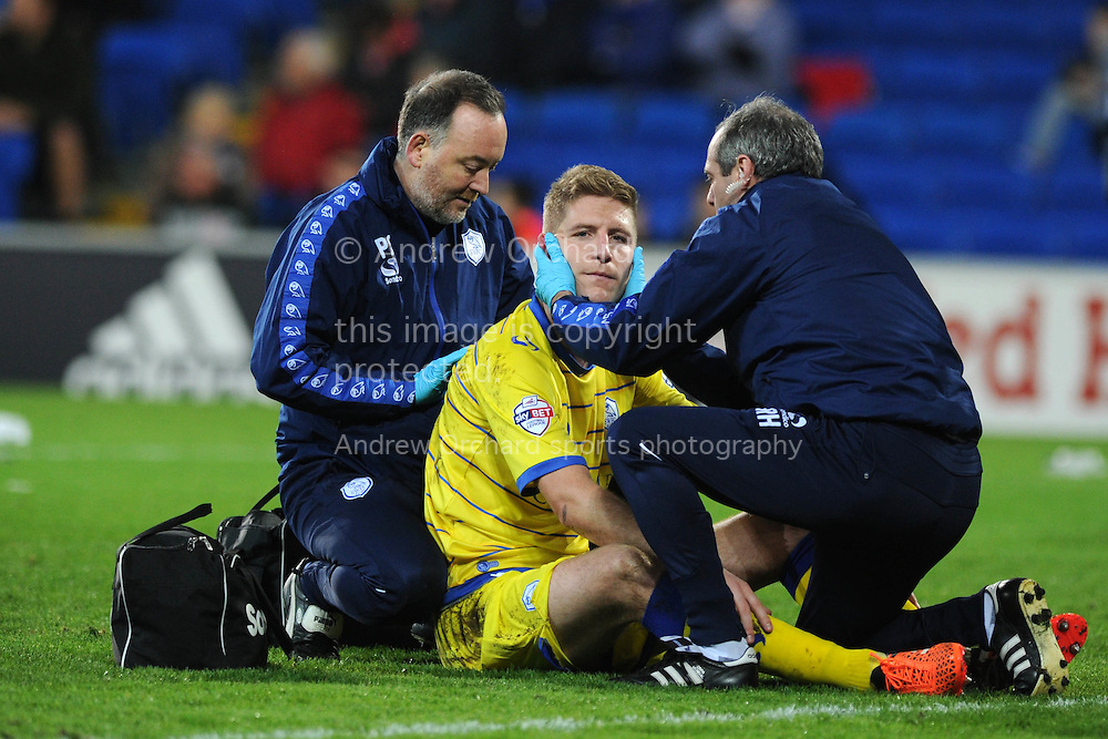 Michael Turner of Sheffield Wed &copy; receives treatment for an injury. Skybet football league championship match, Cardiff city v Sheffield Wednesday at the Cardiff city stadium in Cardiff, South Wales on Saturday 12th December 2015.<br /> pic by Andrew Orchard, Andrew Orchard sports photography.