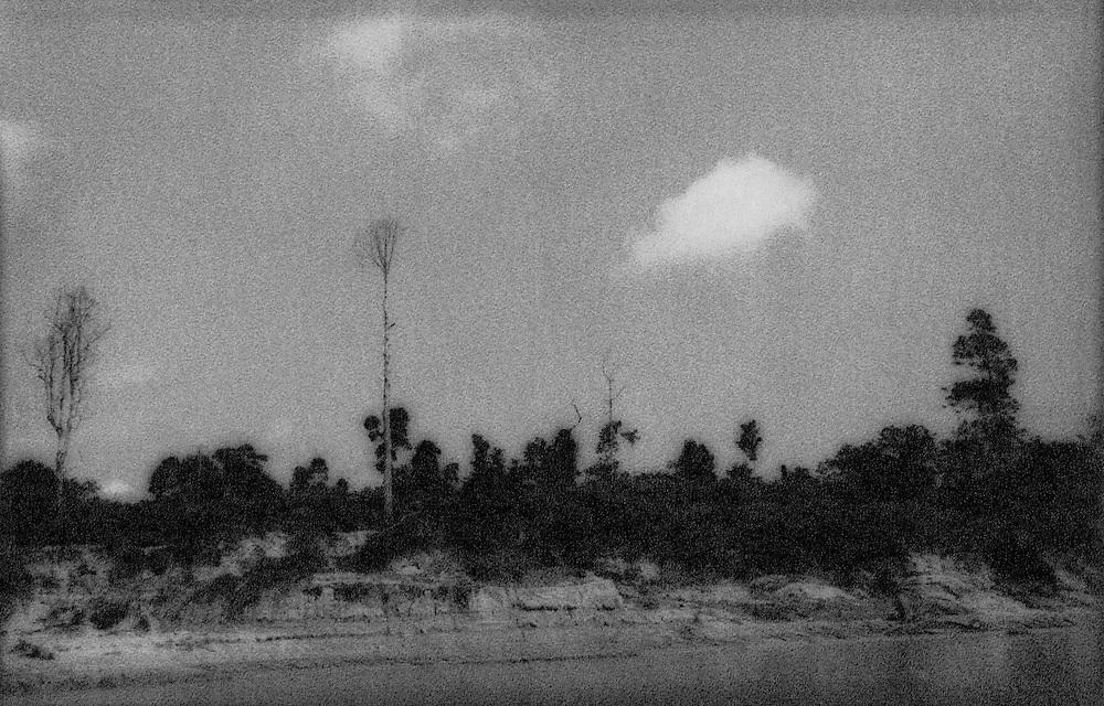 Clearcut near Taman Negara, home to the Batek Negritos, Malaysia.