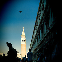 Piazza San Marco in Venice Italy with flying pigeon