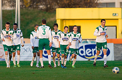Players of Olimpija celebrate at 18th Round of PrvaLiga football match between NK Olimpija and NK Labod Drava, on November 21, 2009, in ZAK, Ljubljana, Slovenia. Olimpija defeated Drava 3:0. (Photo by Vid Ponikvar / Sportida)