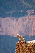 09 AUGUST 2003 -- GRAND CANYON NATIONAL PARK, AZ: A tourist sits on a rock formation on the north rim of the Grand Canyon National Park in northern Arizona.  PHOTO BY JACK KURTZ