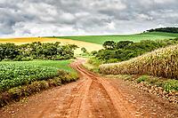 Estrada de terra rumo à Prainha. Ouro Verde, Santa Catarina, Brasil. / <br /> Dirt road. Ouro Verde, Santa Catarina, Brazil.