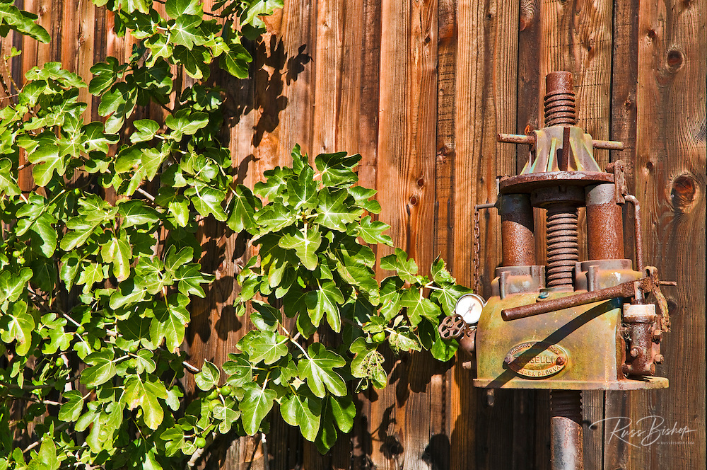 Antique wine press at Harmony Cellars, Harmony, California