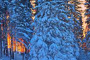 Sunset light on Setting Lake in winter<br />Sasagiu Rapids<br />Manitoba<br />Canada