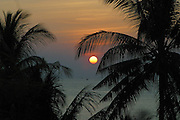 Sunset through the palm tree's on Kai Bay beach, Koh Chang, Thailand.