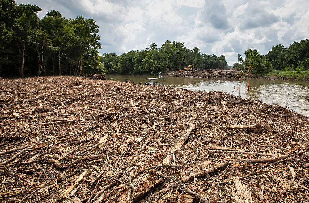The Atchafalaya BasinKeeper in Bayou Chene monitoring work on the <br /> Bayou Bridge Pipeline's right-of-way that was recently cleared of the cypress-tupelo forest  in Louisiana's Atchafalaya Basin before the pipeline is installed.