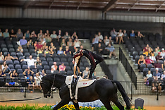 Male Vaulting - Tryon 2018