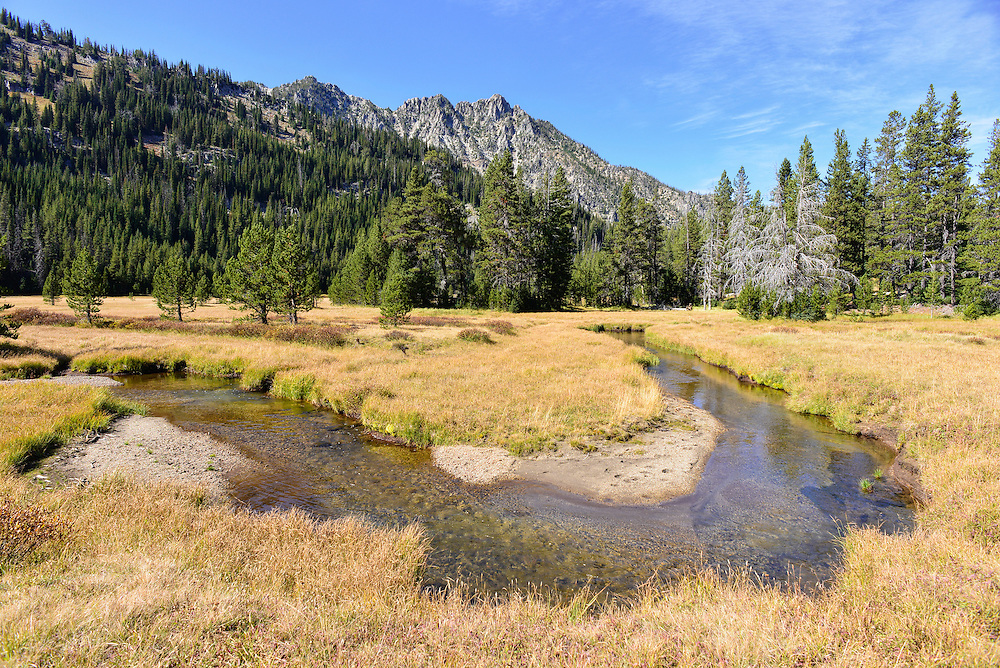 West Fork Wallowa River flowing through a meadow high in the Eagle Cap Wilderness Area, Oregon.