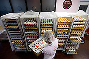 """It's like a smile in a box"", is the sign in the background, as employee Chelsey Demas fills orders by putting cupcakes in boxes inside the bakery. Icing on the Cupcake recently opened a huge bakery and kitchen in West Rocklin, it's the fourth location for the local business, which is enjoying marked success despite a surplus of cupcakeries and economic doldrums. August 12, 2011."