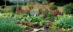 The vegetable garden at Glen Chantry with wooden raised beds. Flower border and seat backed by Stipa gigantea. Design: Sue and Wol Staines