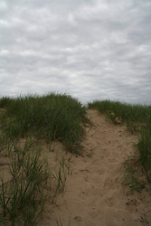 Sandy dune covered with tall grass with a trail leading to the summit against a gray cloudy sky