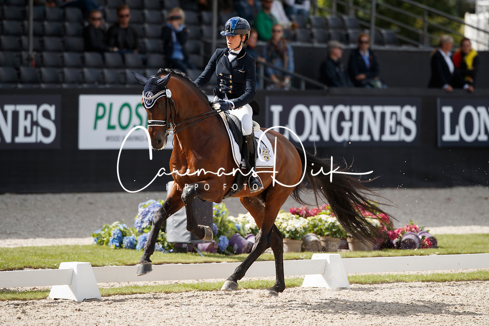 Pauluis Larissa, BEL, Barroso<br /> Longines FEI/WBFSH World Breeding Dressage Championships for Young Horses - Ermelo 2017<br /> &copy; Hippo Foto - Dirk Caremans<br /> 03/08/2017