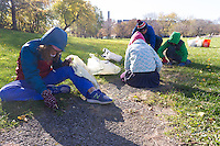 "Louise Mcurry led a team of volunteers Saturday (November 12th, 2016) afternoon to clean up the est side of the Midway Pleasance located at 59th and Stony Island.<br /> <br /> 7728 – Camilla Smith-Donald helps to dig up an old bike path at the east end of the Midway Pleasance while her family works in the background.<br /> <br /> Please 'Like' ""Spencer Bibbs Photography"" on Facebook.<br /> <br /> All rights to this photo are owned by Spencer Bibbs of Spencer Bibbs Photography and may only be used in any way shape or form, whole or in part with written permission by the owner of the photo, Spencer Bibbs.<br /> <br /> For all of your photography needs, please contact Spencer Bibbs at 773-895-4744. I can also be reached in the following ways:<br /> <br /> Website – www.spbdigitalconcepts.photoshelter.com<br /> <br /> Text - Text ""Spencer Bibbs"" to 72727<br /> <br /> Email – spencerbibbsphotography@yahoo.com"