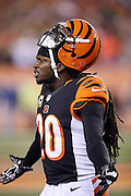 Cincinnati Bengals free safety Reggie Nelson (20) complains about a penalty call for unsportsmanlike conduct during the NFL AFC Wild Card playoff football game against the Pittsburgh Steelers on Saturday, Jan. 9, 2016 in Cincinnati. The Steelers won the game 18-16. (©Paul Anthony Spinelli)