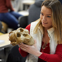 2018 UWL Anthropology Class Skulls