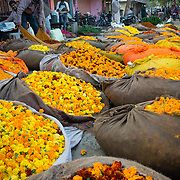 Flower market in Jodpur